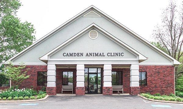 Camden TN Veterinarian